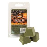 SONOMA Goods for Life™ Autumn Hayride Wax Melt Set, Multi/None