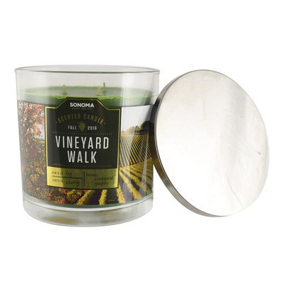 SONOMA Goods for Life™ Vineyard Walk 14-oz. Jar Candle, Multicolor