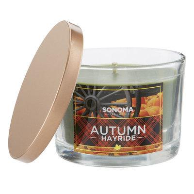 SONOMA Goods for Life™ Autumn Hayride 5-oz. Jar Candle, Multi/None
