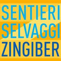Zingiber