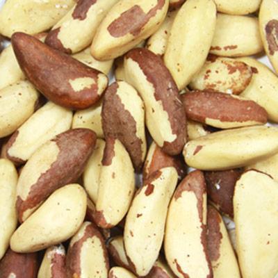 Setton Farms Raw Brazil Nuts-8 oz Container
