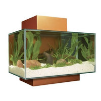 Hagen Fluval Edge Aquarium Set, Burnt Orange, 6-Gallon