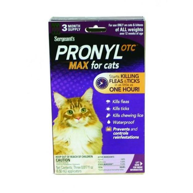 cat litter ok for kittens