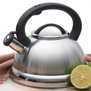 Creative Home Alexa 3 qt. Whistling Tea Kettle Stainless Steel