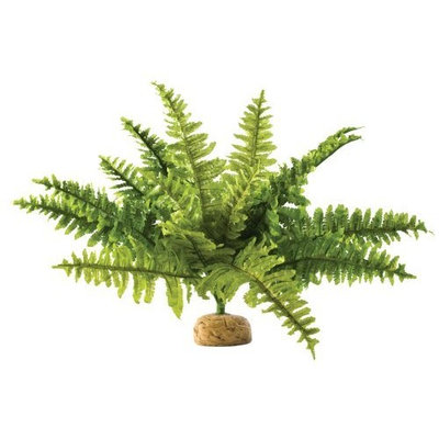 Hagen Exo Terra Terrarium Plant