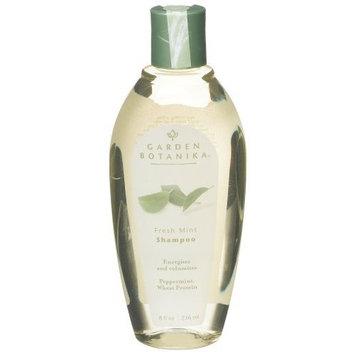 Garden Botanika Shampoo, Fresh Mint, 8-Ounce Bottles