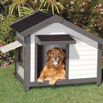 Precision Pet ProConcepts Cozy Cottage Dog House in Gray Size: Medium (39