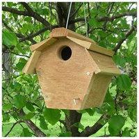 Songbird Essentials SE546 Carolina Wren All Purpose House