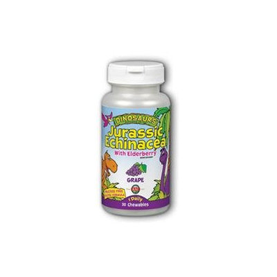 KAL Jurassic Echinacea - 45 Tablets - Other Herbs