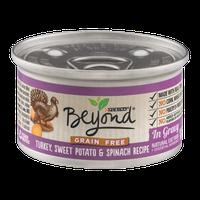 Purina Beyond Natural Cat Food Turkey, Sweet Potato & Spinach Recipe In Gravy