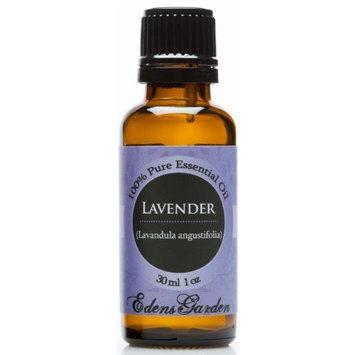 Edens Garden Lavender 100% Pure Therapeutic Grade Essential Oil- 30 ml
