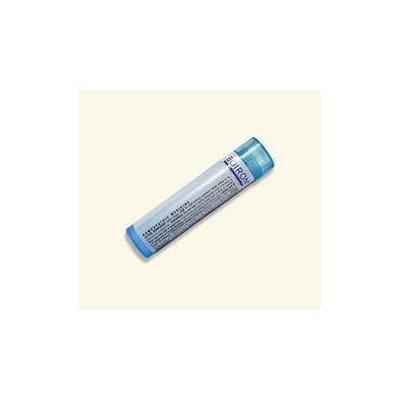 Boiron Kali Iodatum 6c 6C - 80 Pellets - Other Homeopathics