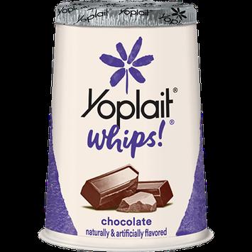 Yoplait® Whips!® Chocolate Lowfat Yogurt Mousse