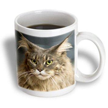 Recaro North 3dRose - Cats - Maine Coon - 11 oz mug
