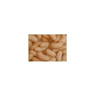 Coralife Beans Cannellini 14 Oz - -Pack of 24