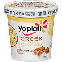 Yoplait® Low Fat Honey Caramel Frozen Greek Yogurt