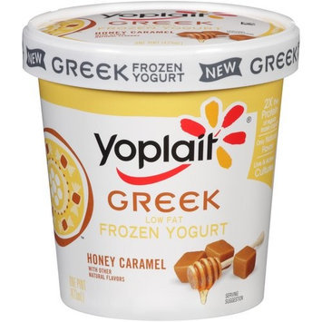 Yoplait® Low Fat Honey Caramel Frozen Greek Yogurt