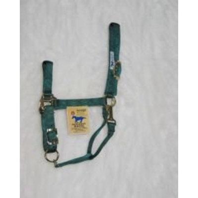 Hamilton Halter Company Animal Legends Polypropylene 1-Inch Horse Halter
