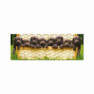 Educa Puppies Panorama Series Puzzle: 1000 pc Ages 12 and up
