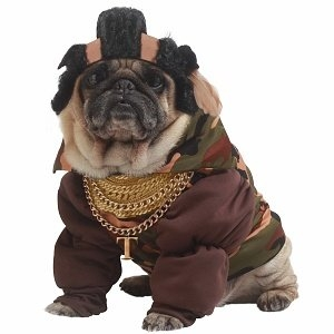 California Costumes Pity the Fool Pet Costume