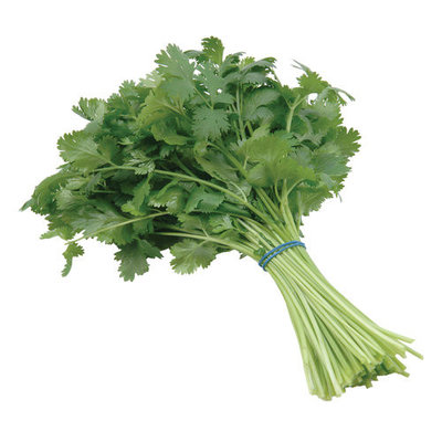 Boskovich Cilantro Bunch, 1ct