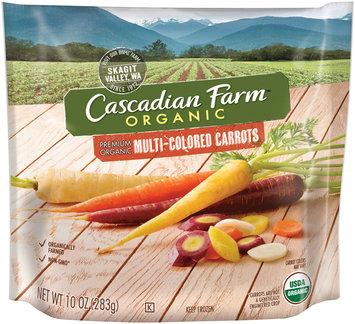 Cascadian Farm™ Organic Multi-Colored Carrots 10 oz. Bag