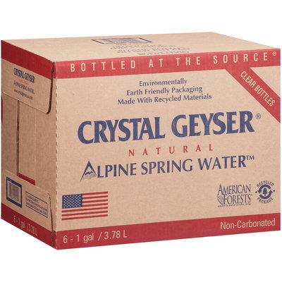 Crystal Geyser® Natural Alpine Spring Water 6-1 gal. Bottles