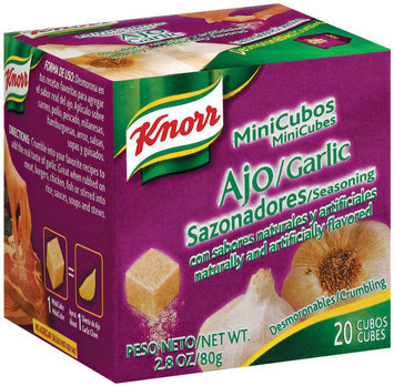 Knorr Hispanic Garlic Mini Cubes Seasoning 20 Ct Box