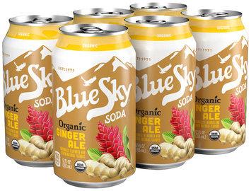 Blue Sky® Organic Ginger Ale Soda 6-12 fl. oz. Cans