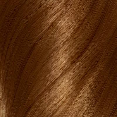 Clairol Natural Instincts Non-Permanent Hair Color Crema Keratina Hair Color Light Golden Brown 6G Caramel Creme 1 Kit