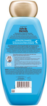 Garnier® Whole Blends™ Coconut Water & Vanilla Milk Extracts Hydrating Shampoo 12.5 fl. oz. Bottle