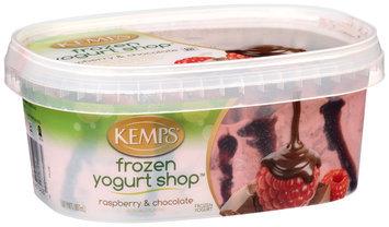 Kemps Frozen Yogurt Shop Raspberry & Chocolate Frozen Yogurt, 1.87 pt. Tub