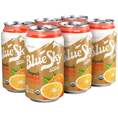 Blue Sky® Organic Orange Soda 6-12 fl. oz. Cans