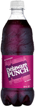 Delaware Punch 20 oz Plastic Bottle