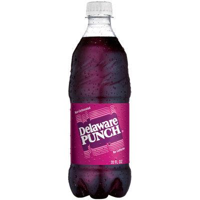 Delaware Punch 20 oz Plastic Bottle