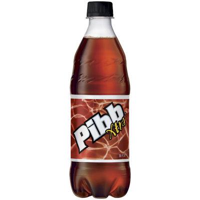 Pibb Xtra 16 oz Plastic Bottle