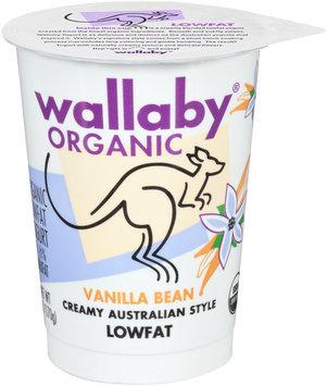 Wallaby® Organic Vanilla Bean Lowfat Yogurt 6 oz. Cup