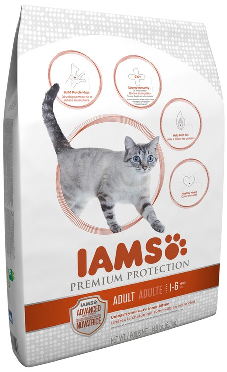 Iams Premium Protection Dry Cat Food
