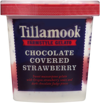 Tillamook® Chocolate Covered Strawberry Farmstyle Gelato 15.5 fl. oz. Tub