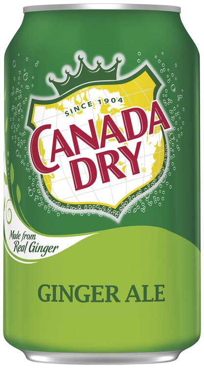Canada Dry® Ginger Ale 20-12 fl. oz. Cans