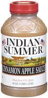 Indian Summer Cinnamon Apple Sauce 48 Oz Plastic Jar