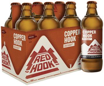 COPPER HOOK 12 oz Beer 6 PK GLASS BOTTLES