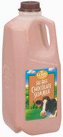 Kemps Chocolate Fat Free Skim Milk