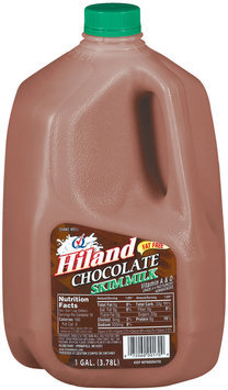 Hiland Chocolate Skim Fat Free Milk 1 Gal Jug