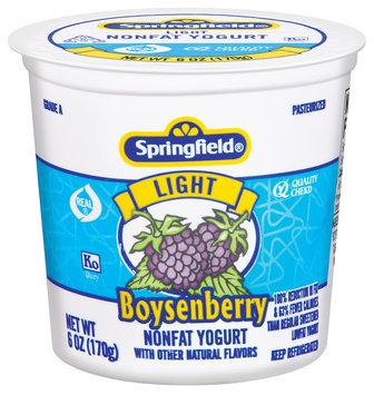 Springfield Light Nonfat Boysenberry Yogurt 6 Oz Cup