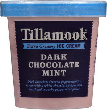 Tillamook® Dark Chocolate Mint Extra Creamy Ice Cream 15.5 fl. oz. Tub