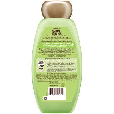 Garnier® Whole Blends™ Green Apple & Green Tea Extracts Refreshing 2-in-1 Shampoo & Conditioner 12.5 fl. oz. Bottle