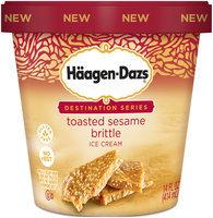 Haagen-Dazs Toasted Sesame Brittle Ice Cream