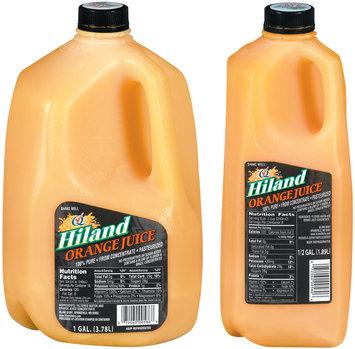 Hiland 1 Gal &  0.5 Gal Group Shot Orange Juice