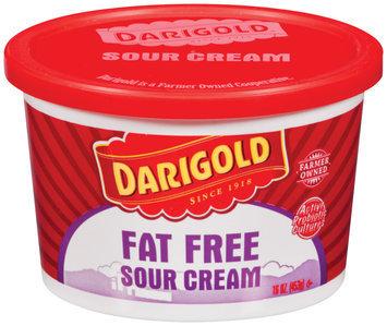 Darigold Fat Free Sour Cream 16 Oz Plastic Tub